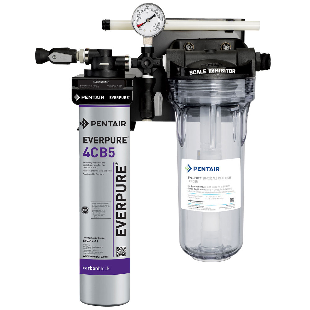 Everpure ev9797 50 kleensteam ct water filtration system for Everpure water treatment system