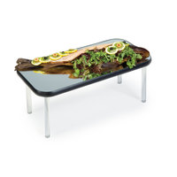 Geneva 2273 Rectangular Rimless Stacking Mirror Food Display Tray - 12 inch x 24 inch