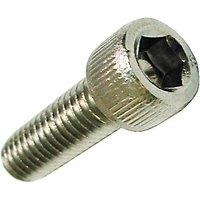 Waring 032653 Torx Head Screw