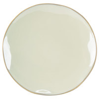 Tuxton GAS-006 TuxTrendz Artisan Sagebrush 10 1/4 inch China Plate - 12/Case