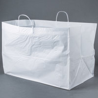22 inch x 14 inch x 15 inch White Rigid Plastic Handled Shopper Bag - 50/Case