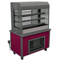 Delfield ASM-60 60 inch Drop-In Refrigerated Horizontal Air Curtain Merchandiser - 14.4 cu. ft.