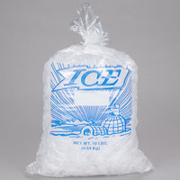 10 lb. Clear Plastic Ice Bag with Igloo Graphic - 1000/Bundle
