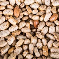 Organic Dried Pinto Beans - 25 lb.