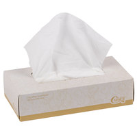 Choice 2-Ply Facial Tissue Box - 30/Case