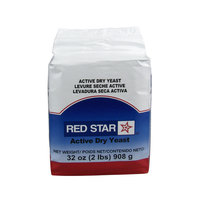 Lesaffre Red Star 2 lb. Vacuum Packed Bakers Active Dry Yeast
