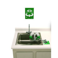 T&S EW-7611 Counter Mounted Pull Down Eyewash Unit