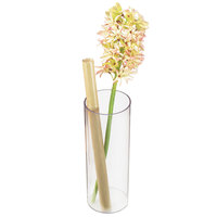 Cal-Mil 872-12 4 inch x 12 inch Round Clear Acrylic Accent Display Vase
