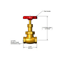 T&S 006647-20R Red Globe Valve Handle with 1/2 inch NPT Female Connections