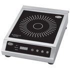 Globe Countertop Induction Ranges and Induction Cookers