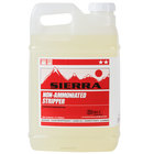 Sierra Hard Floor Cleaning Chemicals & Polishes
