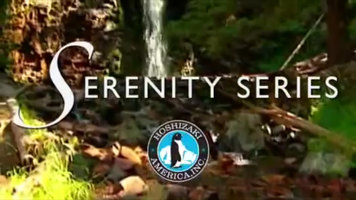 Hoshizaki Serenity Series Ice Machines